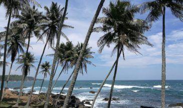 IMG 20190321 124505 e1555867047750 Keralas Küste