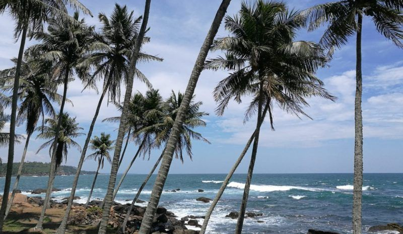 IMG 20190321 124505 e1555867047750 Sri Lanka
