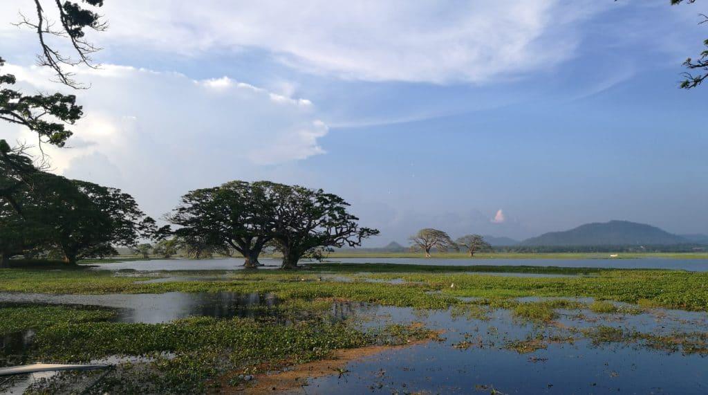 Sri Lanka Landschaft