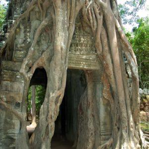 Kambodscha Pilger- und Erholungsreise mit Janet