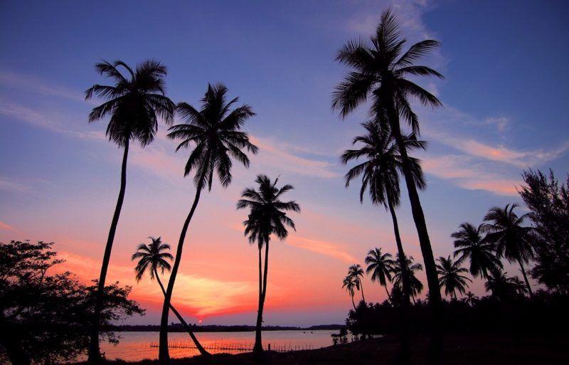 reiseratgeber Sri Lanka