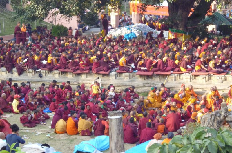 Bodhibaum, Bodhgaya