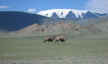 mongolia 590800 640 Mongolei